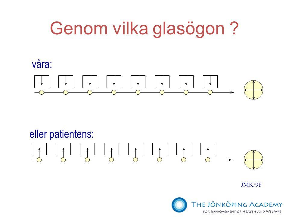 Genom vilka glasögon våra: eller patientens: JMK/98