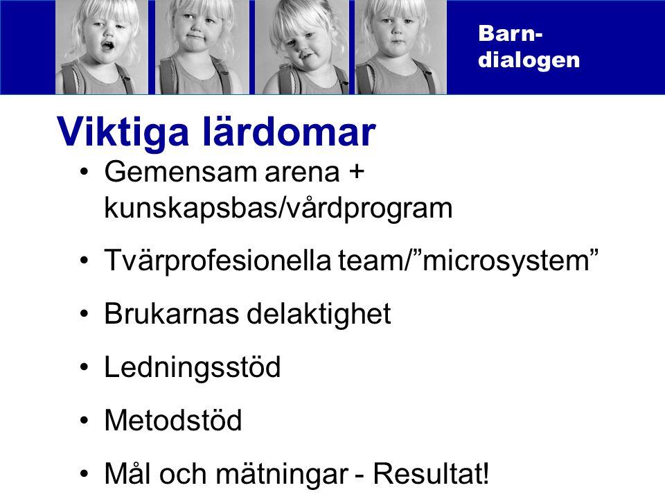 Viktiga lärdomar Gemensam arena + kunskapsbas/vårdprogram