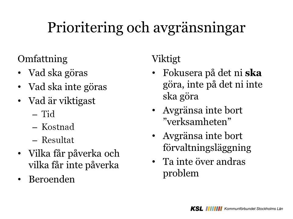 Prioritering och avgränsningar