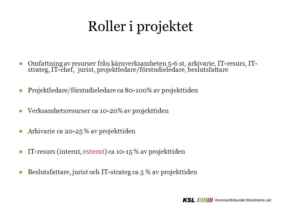 Roller i projektet