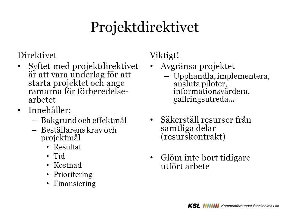 Projektdirektivet Direktivet