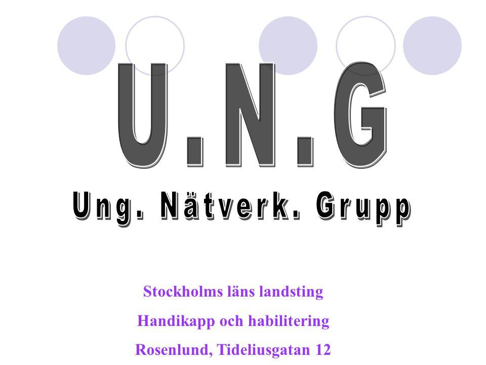 U.N.G Ung. Nätverk. Grupp Stockholms läns landsting