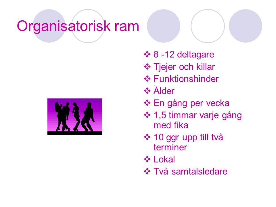 Organisatorisk ram 8 -12 deltagare Tjejer och killar Funktionshinder