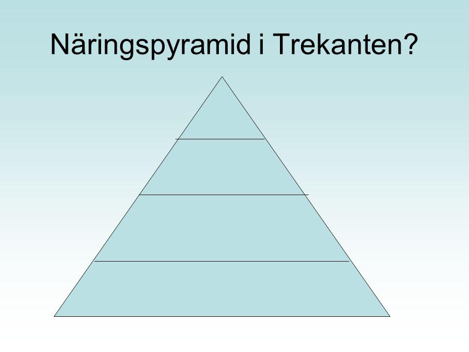 Näringspyramid i Trekanten
