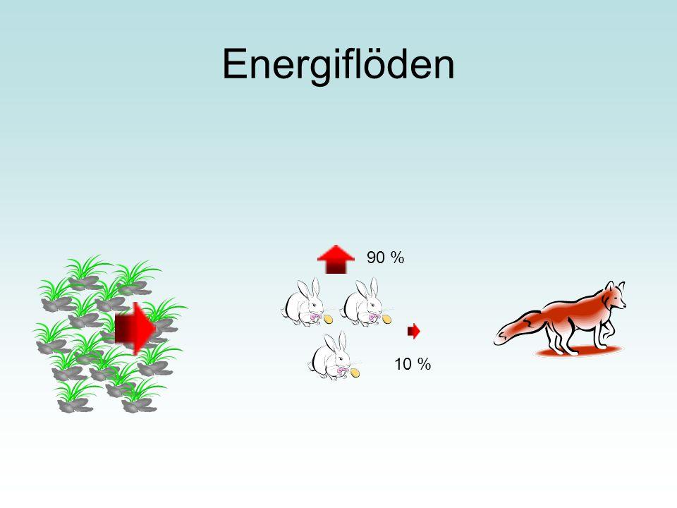 Energiflöden 90 % 10 %