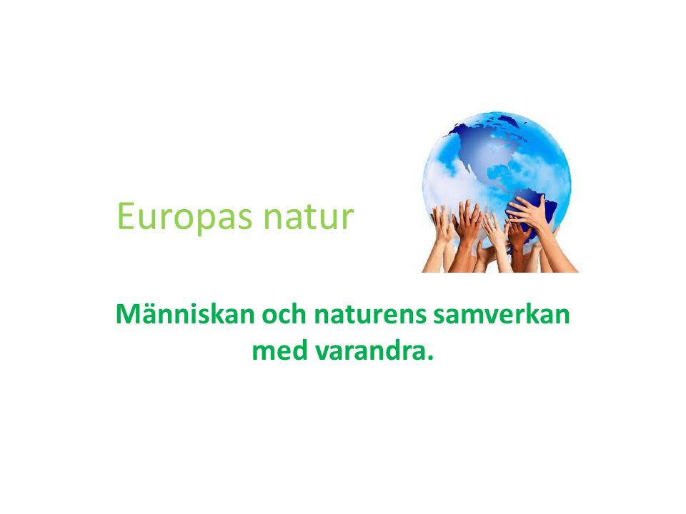 Människan och naturens samverkan med varandra.