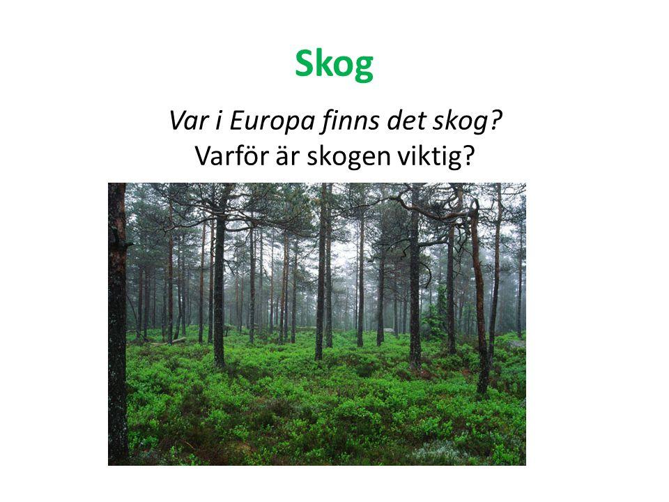 Var i Europa finns det skog Varför är skogen viktig