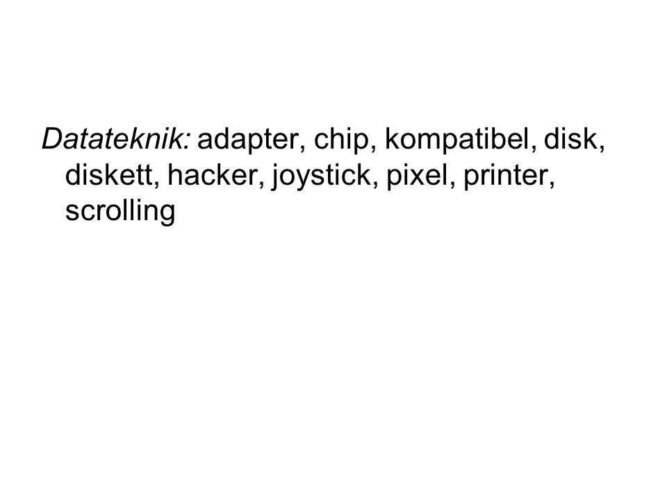 Datateknik: adapter, chip, kompatibel, disk, diskett, hacker, joystick, pixel, printer, scrolling