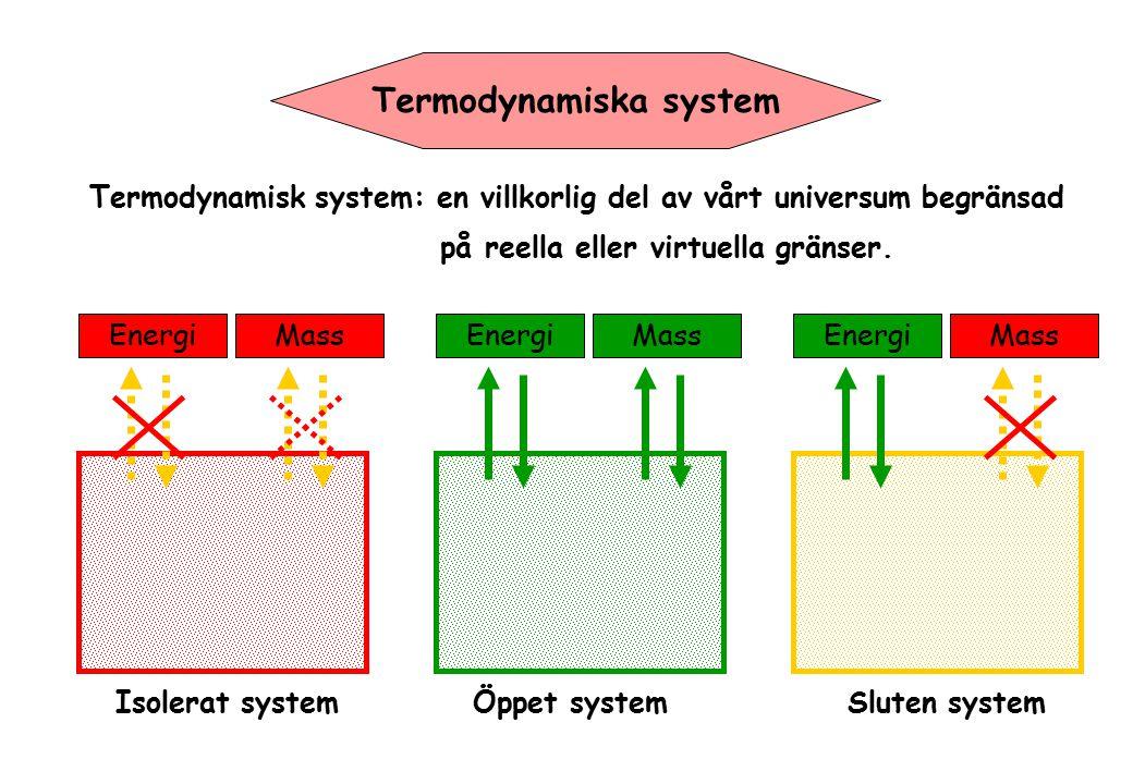 Termodynamiska system