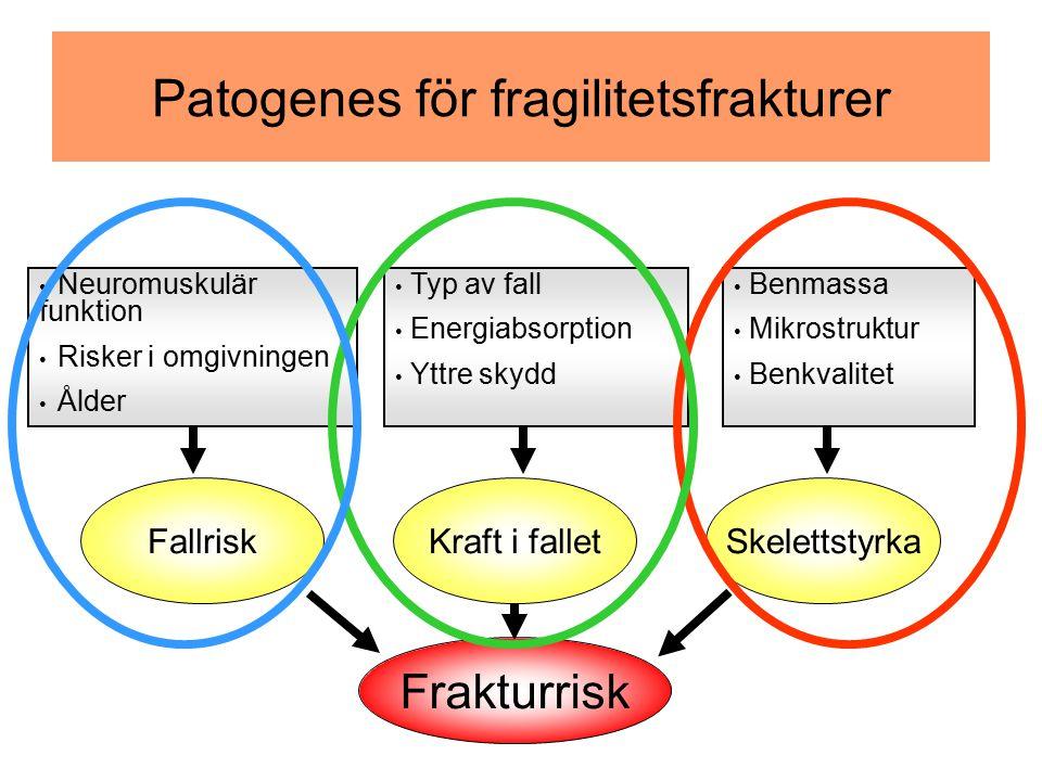Patogenes för fragilitetsfrakturer