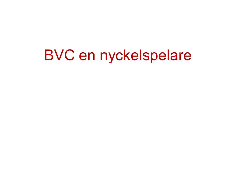 BVC en nyckelspelare