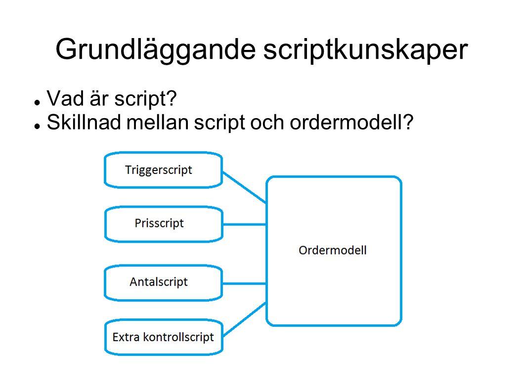 Grundläggande scriptkunskaper