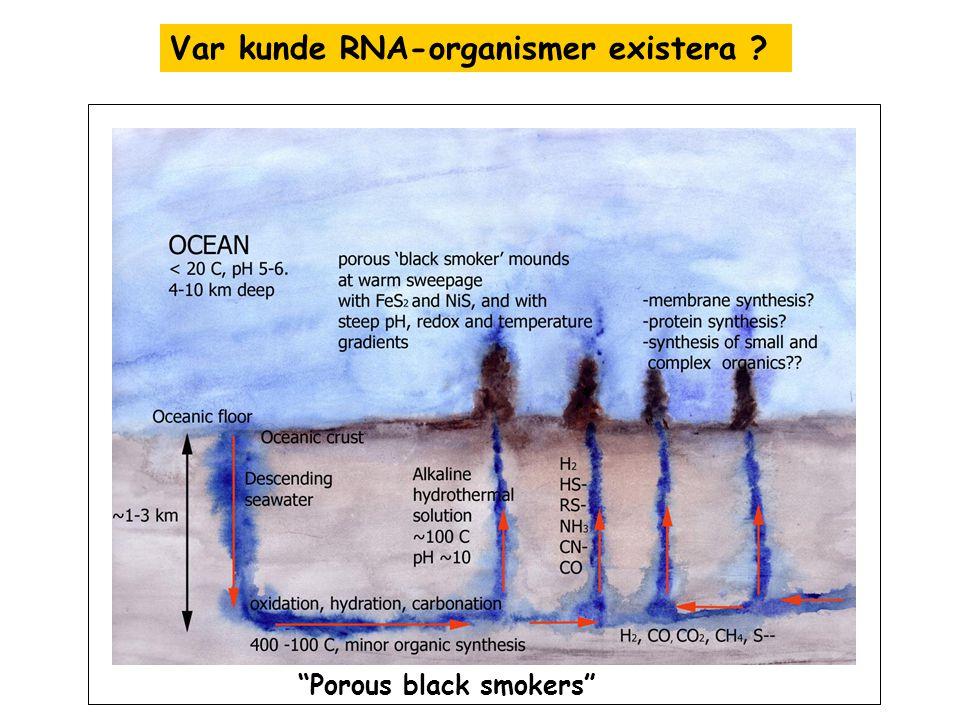 Var kunde RNA-organismer existera