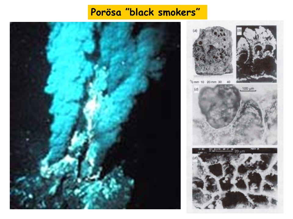 Porösa black smokers