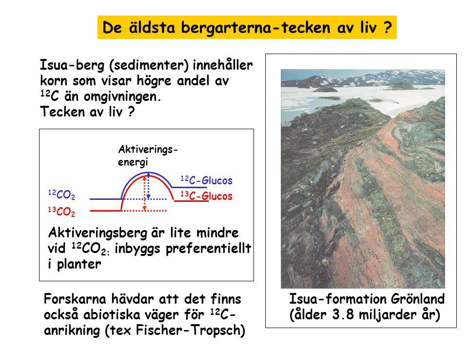 De äldsta bergarterna-tecken av liv