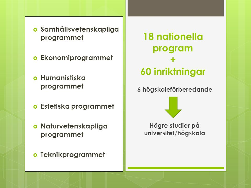 18 nationella program + 60 inriktningar