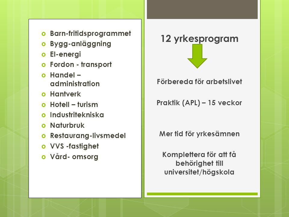 12 yrkesprogram Barn-fritidsprogrammet Bygg-anläggning El-energi