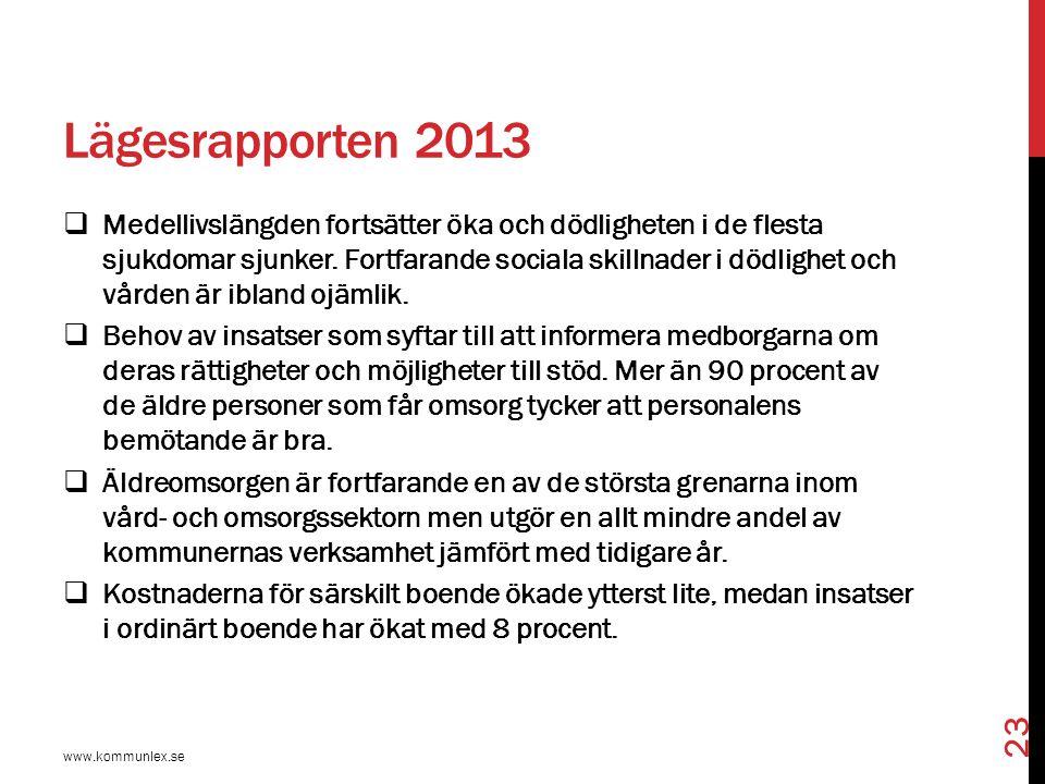 Lägesrapporten 2013