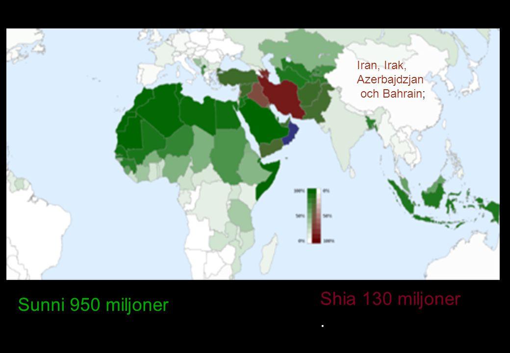 Sunni 950 miljoner Shia 130 miljoner . Iran, Irak, Azerbajdzjan