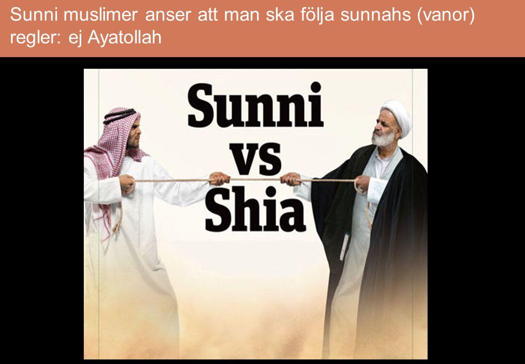 Shia (grupp, sekt) muslimer anser att man ska utse någon i Mohammeds familj som efterträdare: Ayatollah Iran