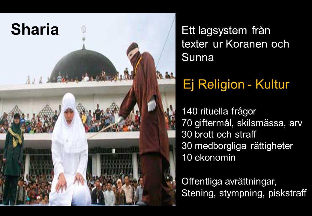 Sharia Ej Religion - Kultur