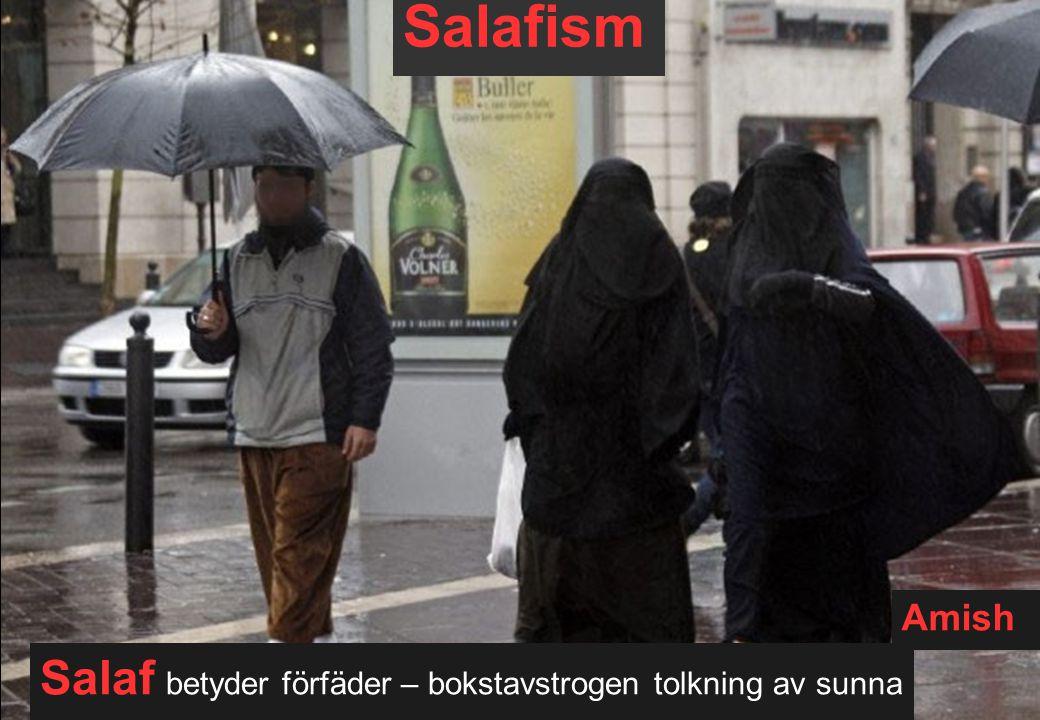 Salafism Salaf betyder förfäder – bokstavstrogen tolkning av sunna