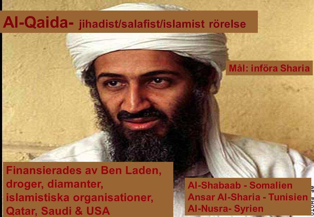 Al-Qaida- jihadist/salafist/islamist rörelse