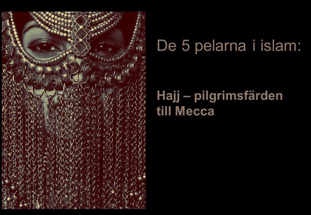 De 5 pelarna i islam: Hajj – pilgrimsfärden till Mecca 8/3/2011 37