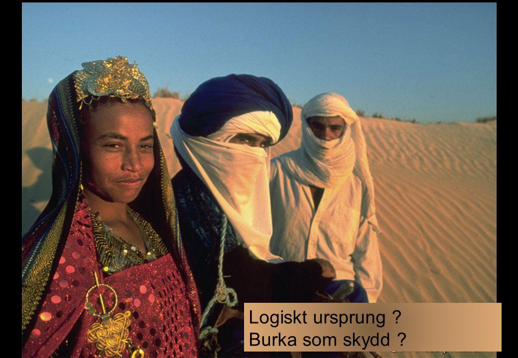 Logiskt ursprung Burka som skydd