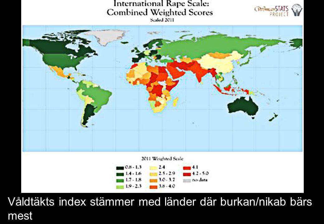 Våldtäkts index stämmer med länder där burkan/nikab bärs mest