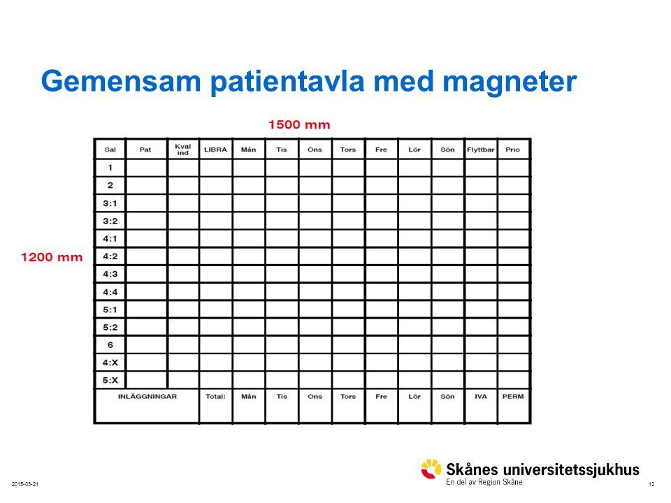 Gemensam patientavla med magneter