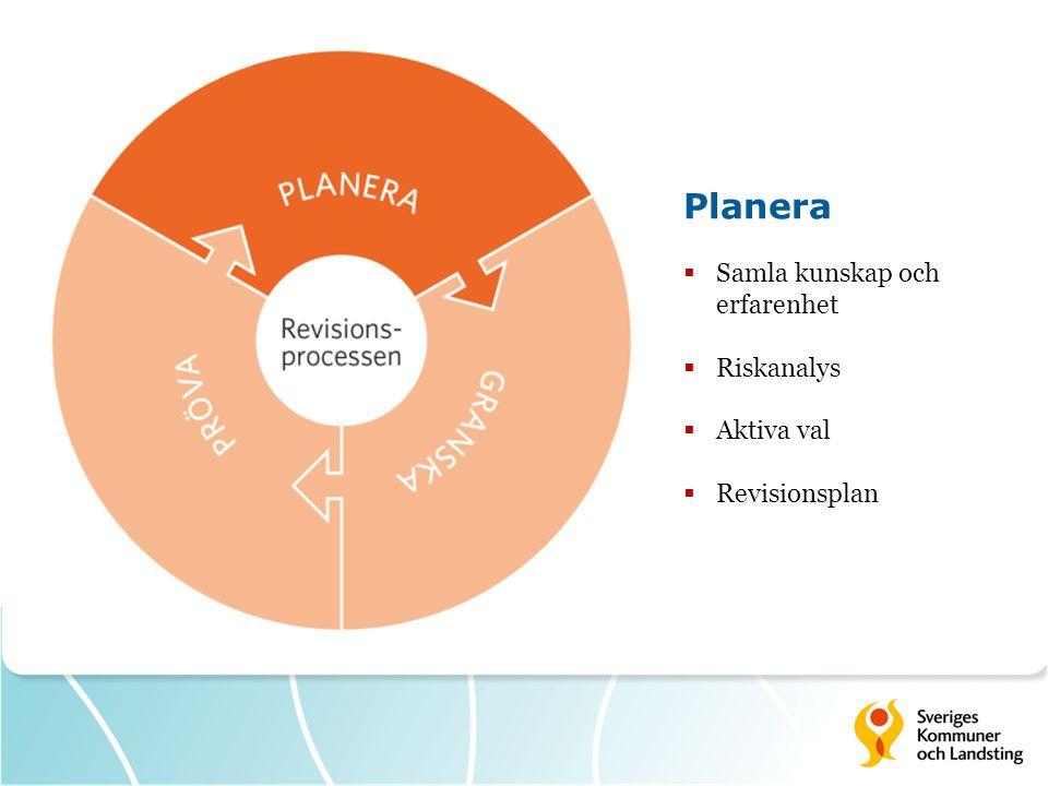 Planera Samla kunskap och erfarenhet Riskanalys Aktiva val