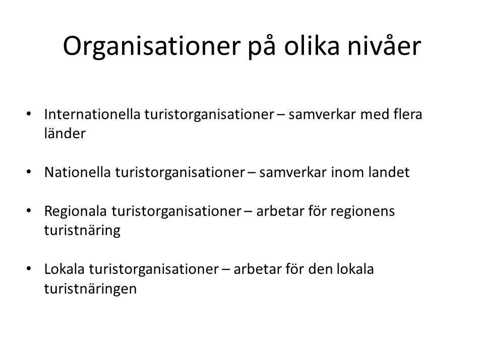 Organisationer på olika nivåer