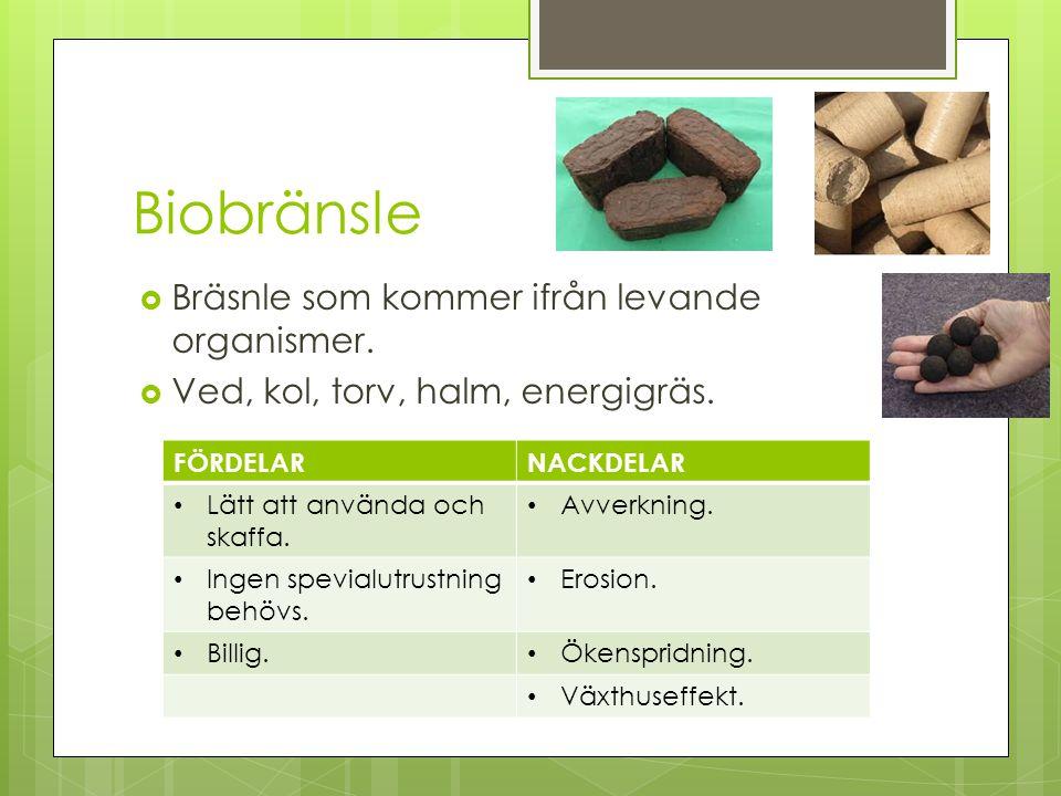 Biobränsle Bräsnle som kommer ifrån levande organismer.