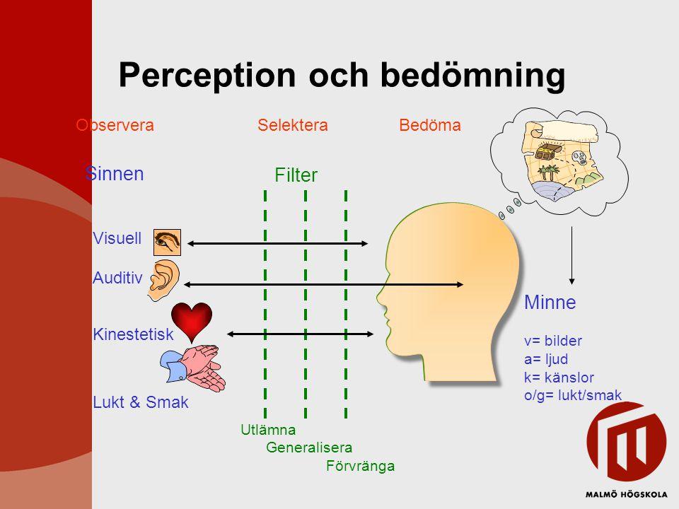 Perception och bedömning