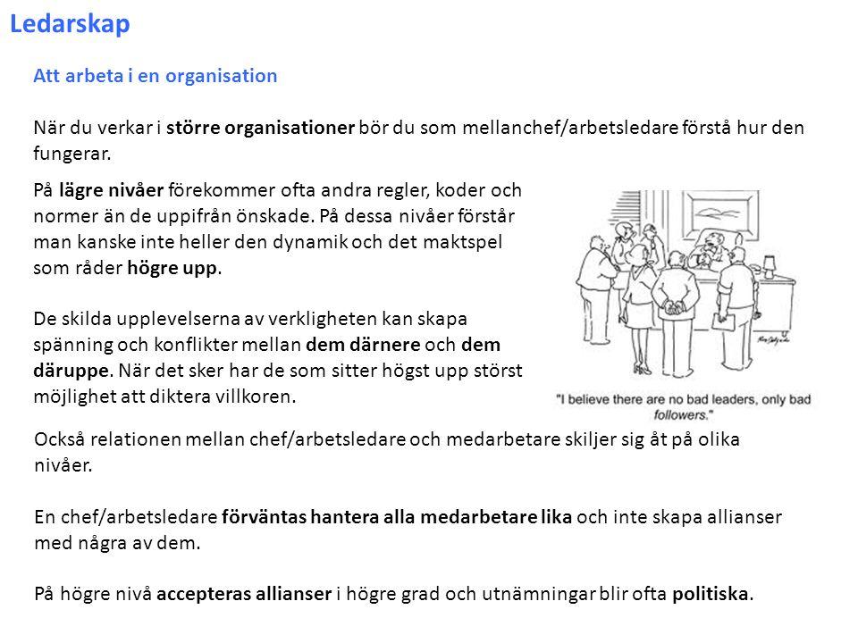 Ledarskap Att arbeta i en organisation