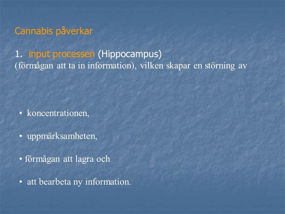 Cannabis påverkar 1. input processen (Hippocampus) (förmågan att ta in information), vilken skapar en störning av.
