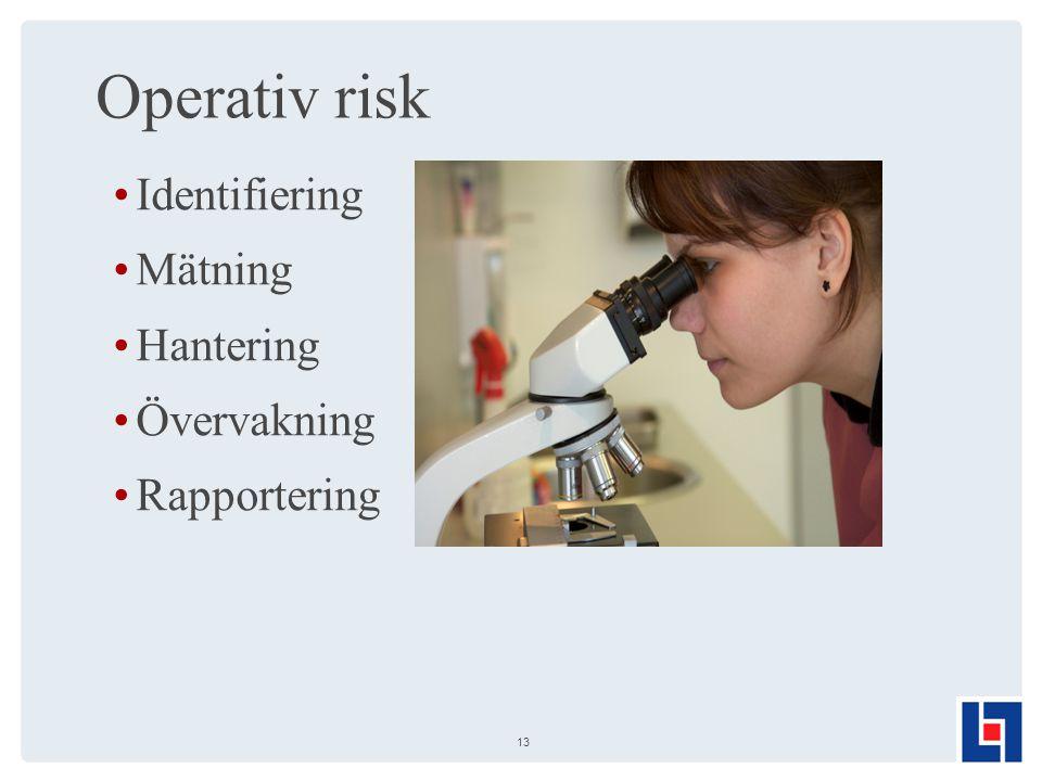 Operativ risk Identifiering Mätning Hantering Övervakning Rapportering