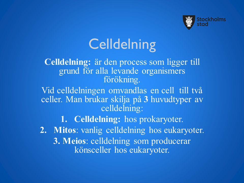 Celldelning Celldelning: är den process som ligger till grund för alla levande organismers förökning.