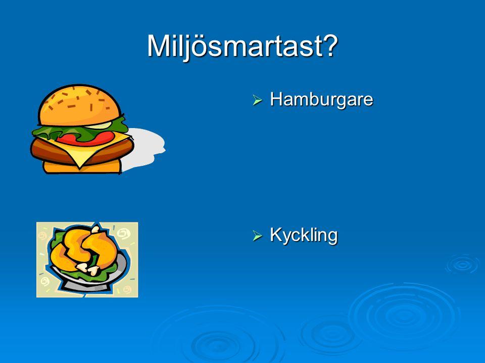 Miljösmartast Hamburgare Kyckling