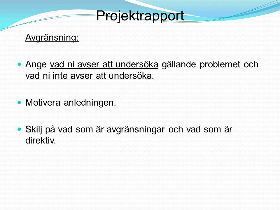 Projektrapport Avgränsning: