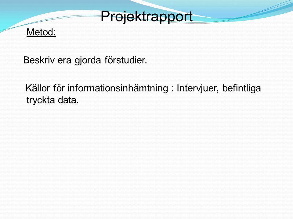 Projektrapport Metod: Beskriv era gjorda förstudier.