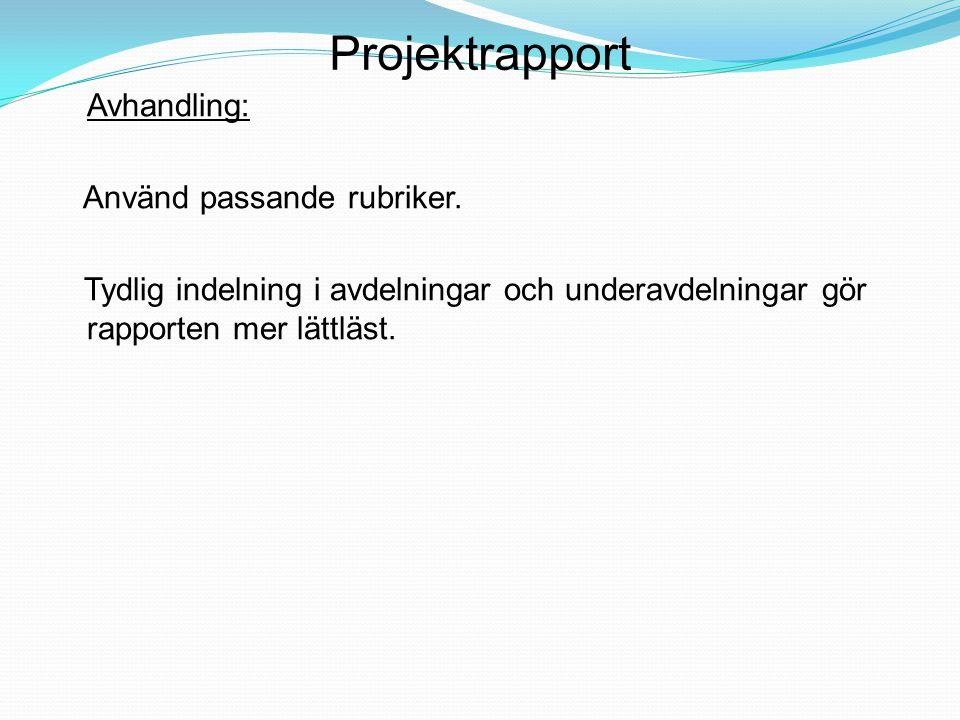 Projektrapport Avhandling: Använd passande rubriker.