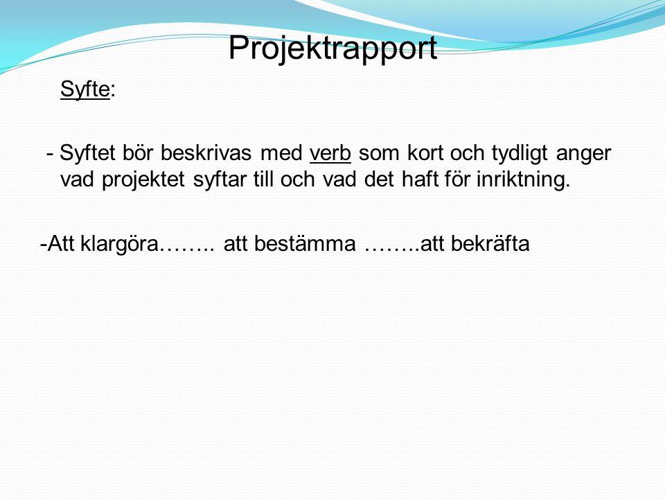 Projektrapport Syfte: