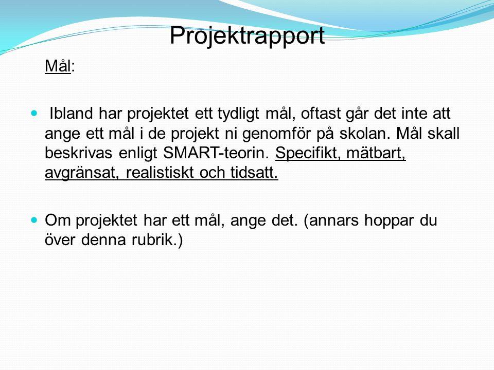 Projektrapport Mål: