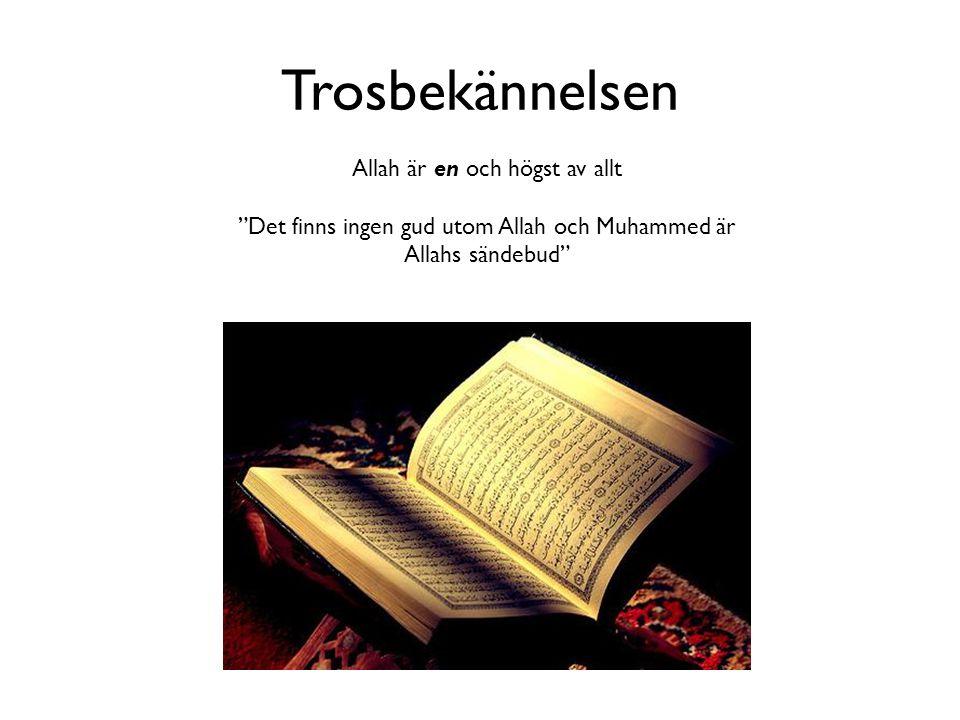 Trosbekännelsen Allah är en och högst av allt