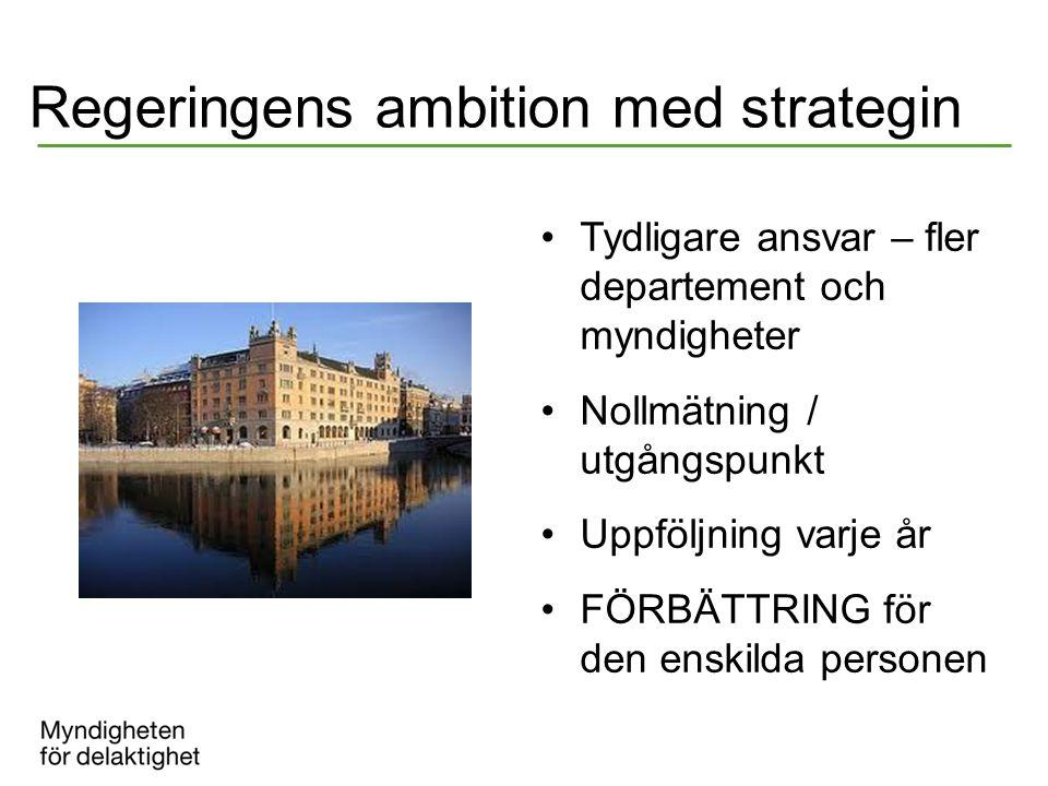 Regeringens ambition med strategin