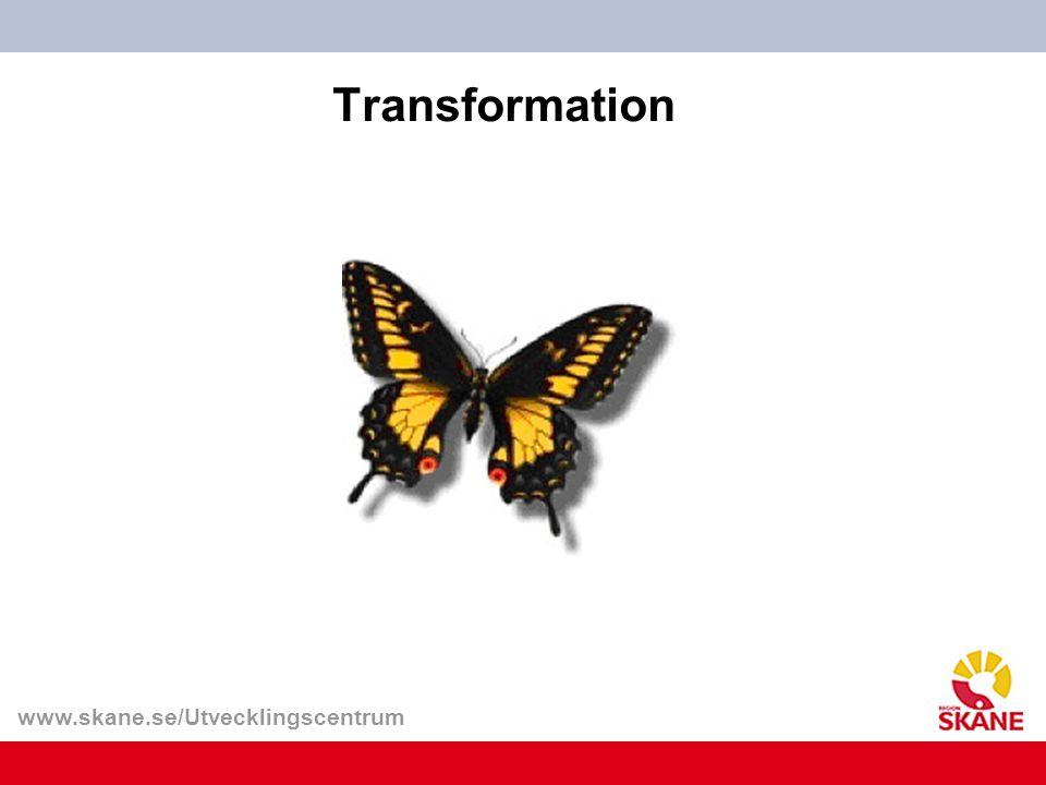 Transformation Larven är ett förstadium till nästa utvecklingsstadium puppan på vägen till en fullbildad insekt.