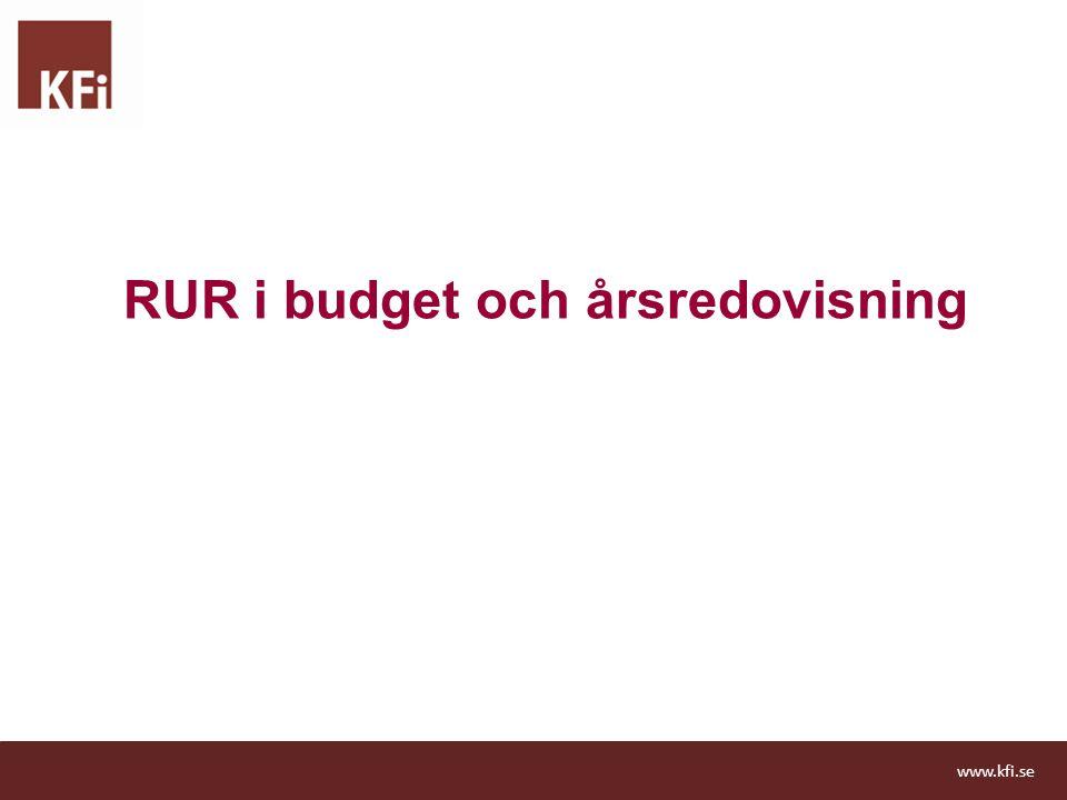 RUR i budget och årsredovisning