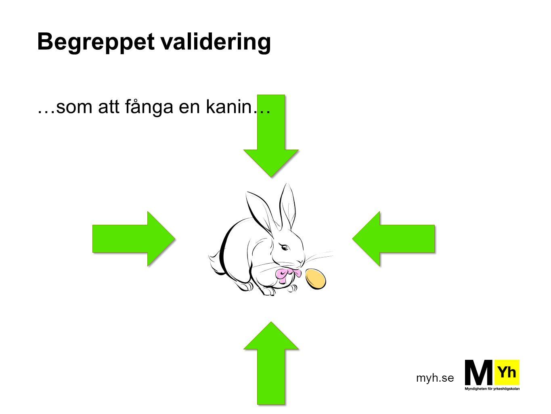 Begreppet validering …som att fånga en kanin…